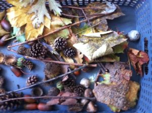photo33 Fall-Inspired Sensory Bin and Crafts homeschool