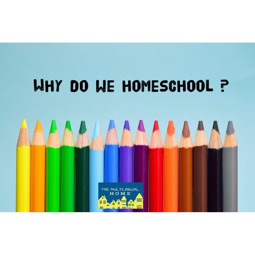 Why do We Homeschool