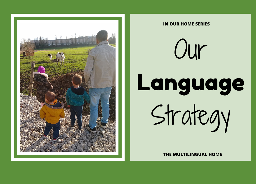 Our Language Strategy
